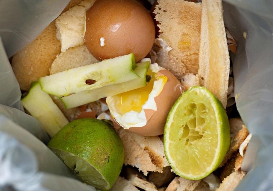 Породица баци у ђубре храну вредну 80.000